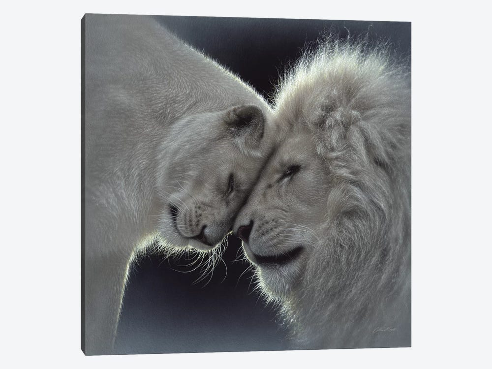 White Lion Love, Square 1-piece Canvas Wall Art