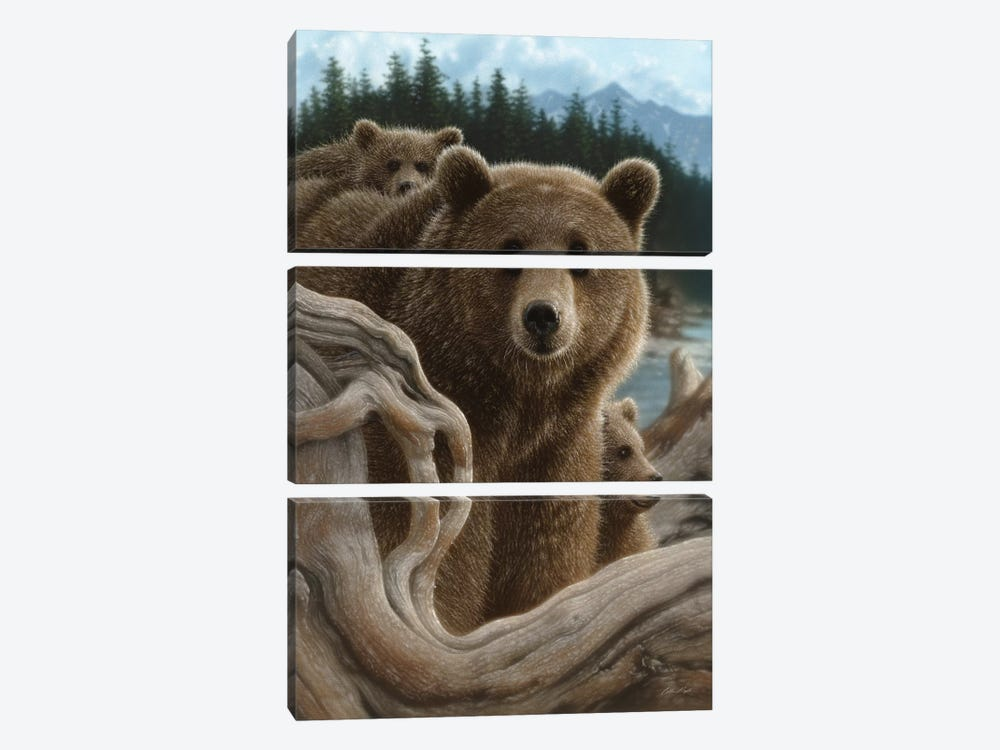 Brown Bears Backpacking, Vertical by Collin Bogle 3-piece Canvas Art Print