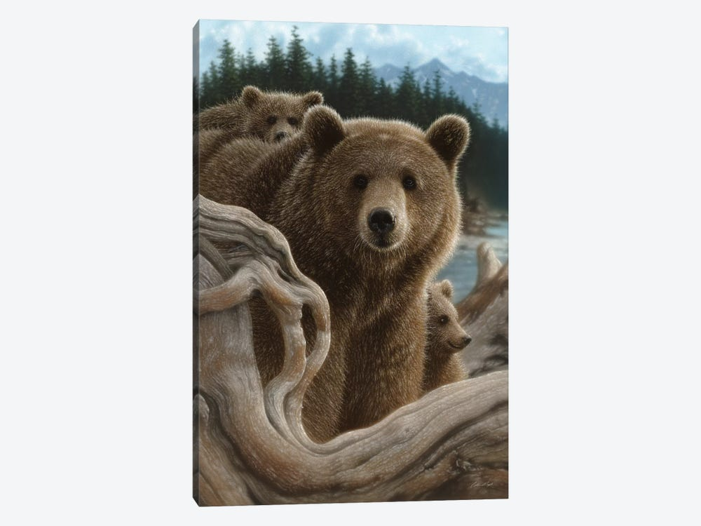 Brown Bears Backpacking, Vertical by Collin Bogle 1-piece Canvas Print