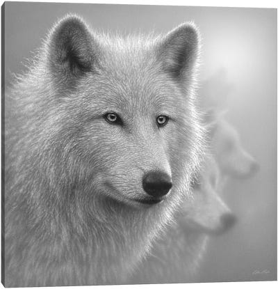 Arctic Wolves Whiteout In Black & White Canvas Art Print
