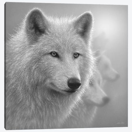 Arctic Wolves Whiteout In Black & White Canvas Print #CBO92} by Collin Bogle Canvas Art