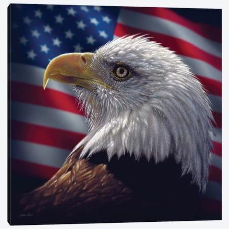 Bald Eagle Portrait America, Square 3-Piece Canvas #CBO9} by Collin Bogle Canvas Artwork