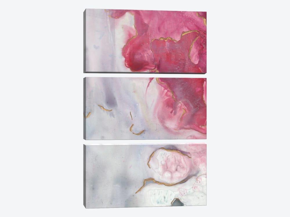 Magenta Dream II by Joyce Combs 3-piece Canvas Artwork