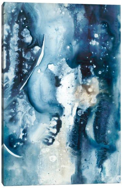 Peaceful Calm II Canvas Art Print
