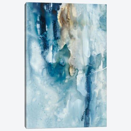 Peaceful Calm III Canvas Print #CBS105} by Joyce Combs Canvas Art