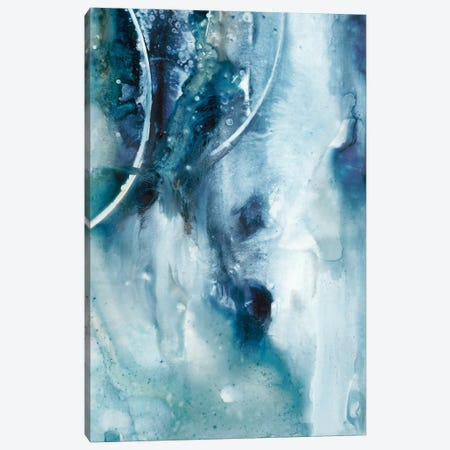 Peaceful Calm IV Canvas Print #CBS106} by Joyce Combs Canvas Art