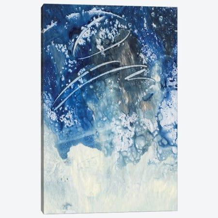 Sky Fall III Canvas Print #CBS151} by Joyce Combs Canvas Art