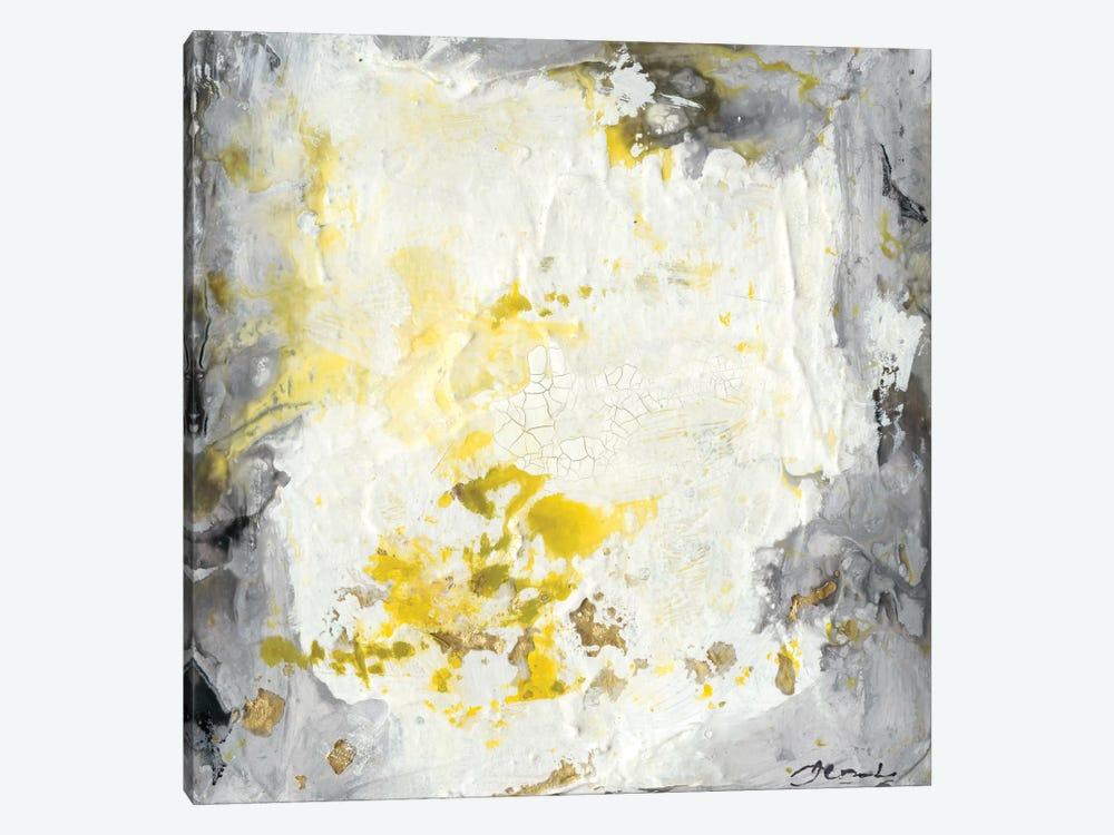 Soft Cliffs I by Joyce Combs 1-piece Canvas Artwork