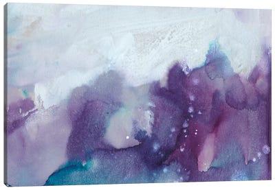 Ice Crystals IV Canvas Art Print