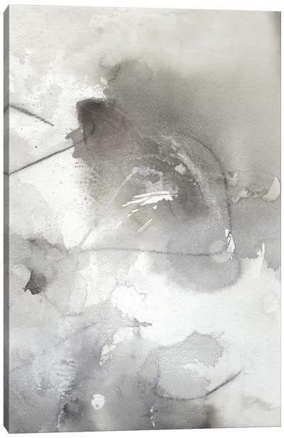 Mystical Objects II Canvas Art Print