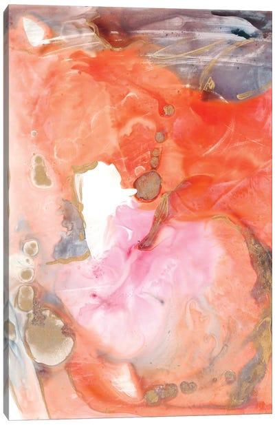 Lighting the Way II Canvas Art Print