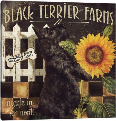 Vermont Farms V Canvas Art Print