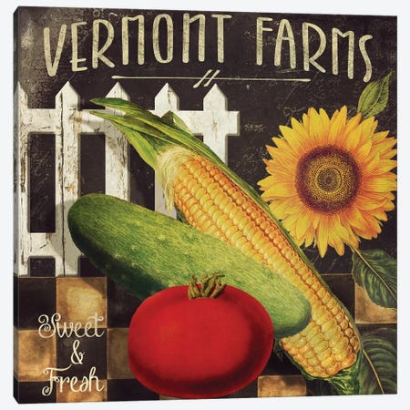 Vermont Farms VII Canvas Print #CBY1002} by Color Bakery Canvas Art Print