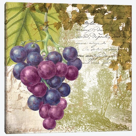 Vigneto Canvas Print #CBY1022} by Color Bakery Art Print