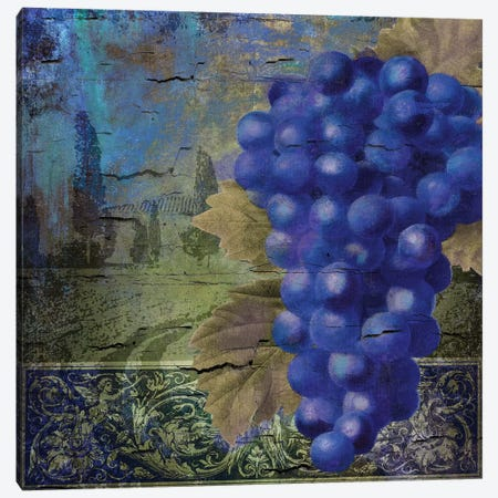 Vino Blu I Canvas Print #CBY1028} by Color Bakery Art Print