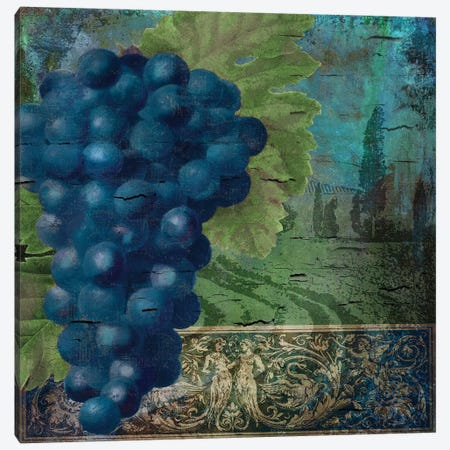 Vino Blu II Canvas Print #CBY1029} by Color Bakery Canvas Print