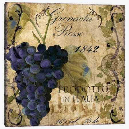Vino Italiano III Canvas Print #CBY1032} by Color Bakery Canvas Art