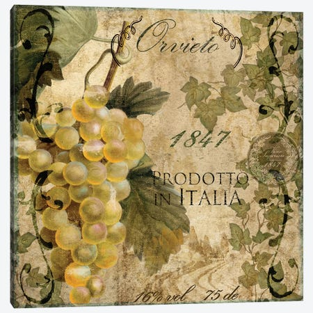 Vino Italiano IV Canvas Print #CBY1033} by Color Bakery Canvas Wall Art