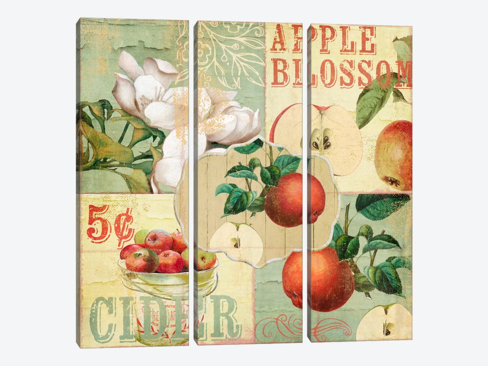 Apple Blossoms I by Color Bakery 3-piece Canvas Print