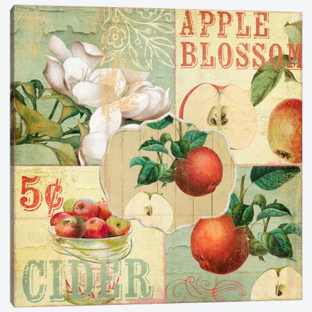 Apple Blossoms I Canvas Print #CBY104} by Color Bakery Canvas Wall Art