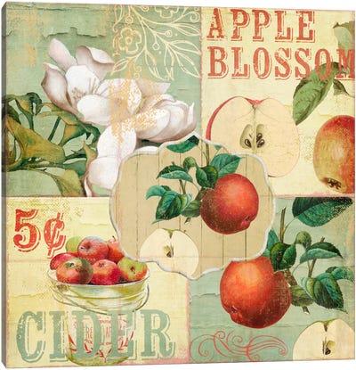 Apple Blossoms I Canvas Art Print