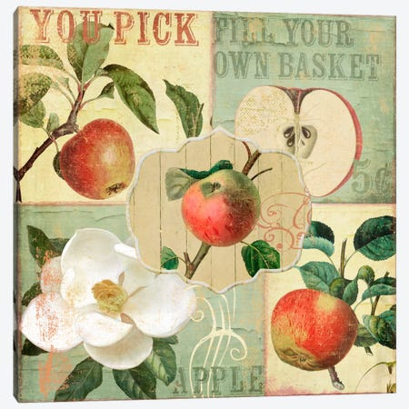 Apple Blossoms II Canvas Print #CBY105} by Color Bakery Canvas Art