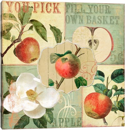 Apple Blossoms II Canvas Art Print