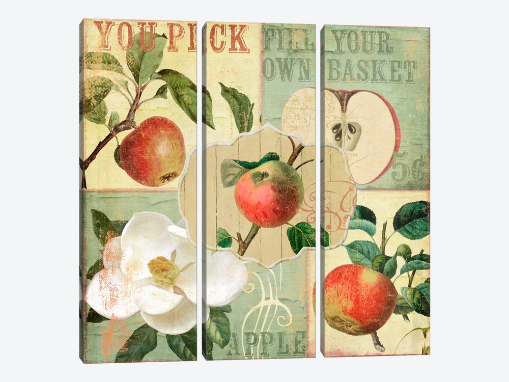 Apple Blossoms II by Color Bakery 3-piece Canvas Artwork