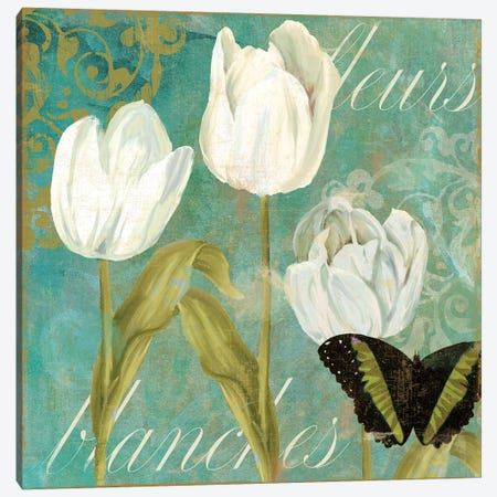 White Tulips I Canvas Print #CBY1060} by Color Bakery Canvas Art Print
