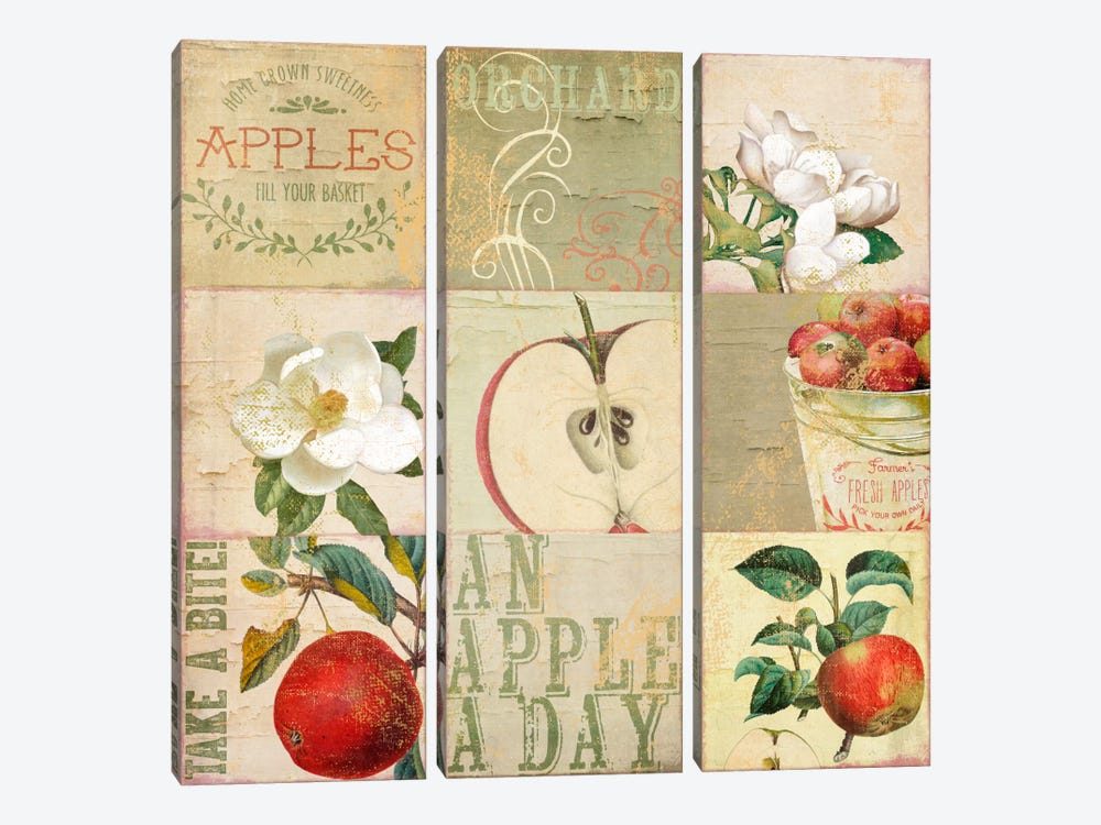 Apple Blossoms III by Color Bakery 3-piece Canvas Art Print