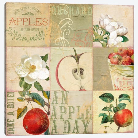 Apple Blossoms III Canvas Print #CBY106} by Color Bakery Canvas Artwork