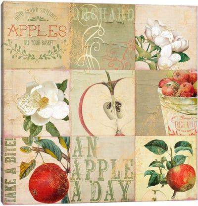 Apple Blossoms III Canvas Art Print