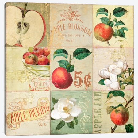 Apple Blossoms IV Canvas Print #CBY107} by Color Bakery Canvas Art