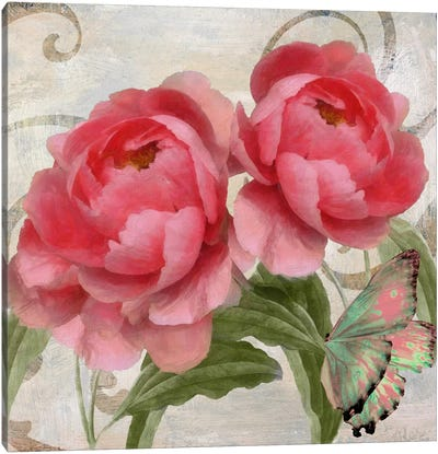 Apricot Peonies I Canvas Art Print