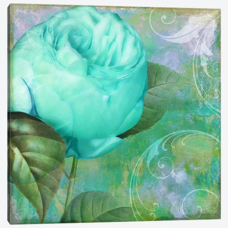 Aqua Rose I Canvas Print #CBY113} by Color Bakery Canvas Artwork