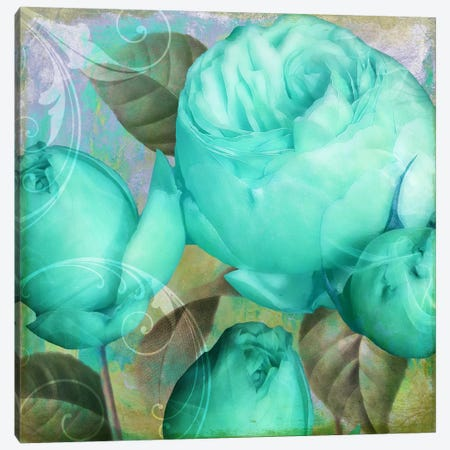 Aqua Rose II 3-Piece Canvas #CBY114} by Color Bakery Canvas Print