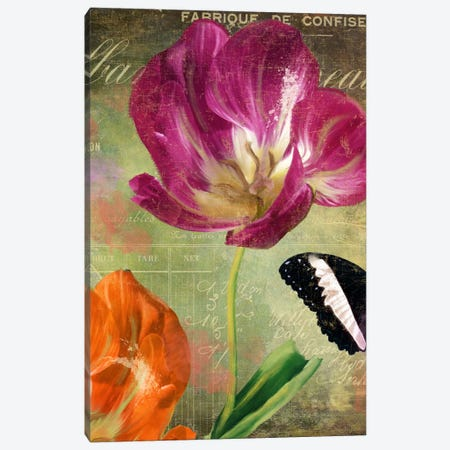 Aubergine Peony Canvas Print #CBY117} by Color Bakery Art Print