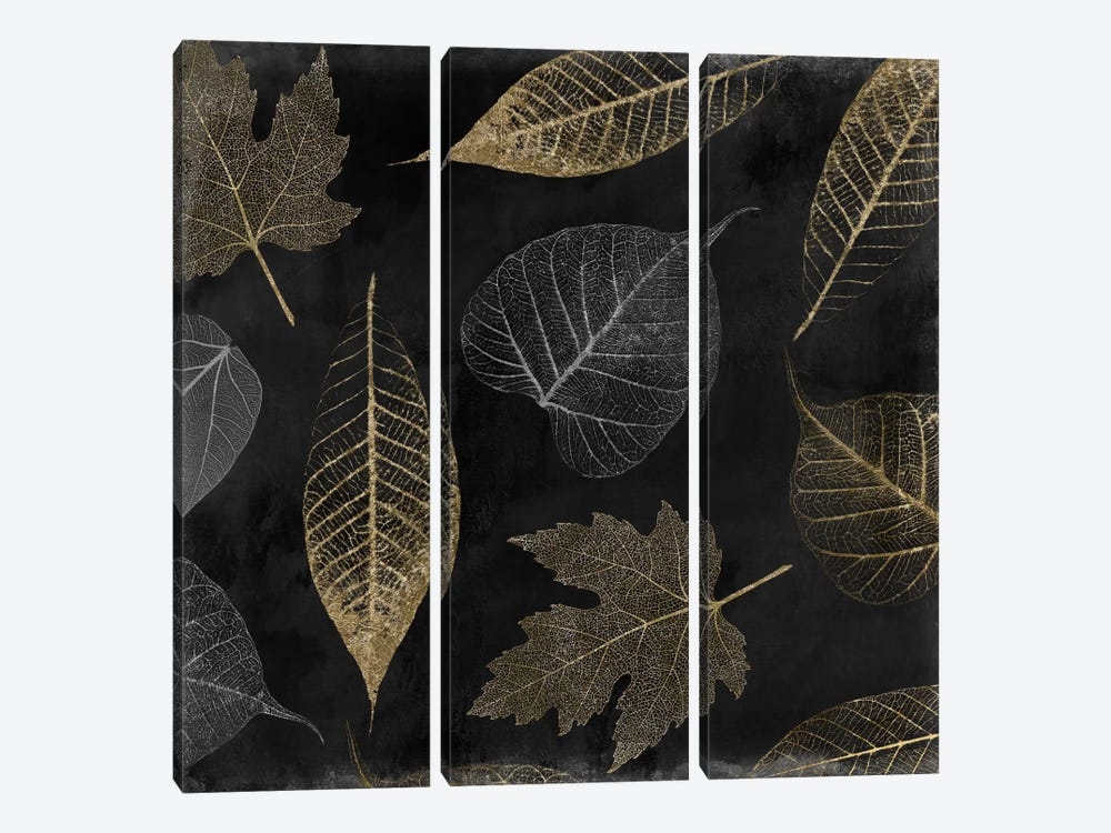 Autumn Gold Black Background by Color Bakery 3-piece Canvas Artwork