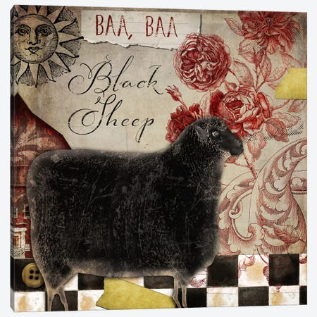 Baa Baa Black Sheep Canvas Print #CBY123} by Color Bakery Canvas Print