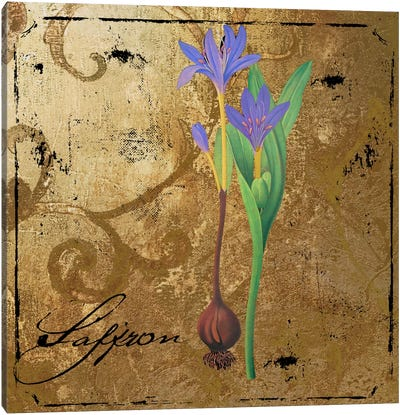 Black Gold Herbs II Canvas Art Print