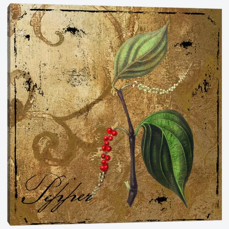 Black Gold Herbs III 3-Piece Canvas #CBY164} by Color Bakery Canvas Artwork