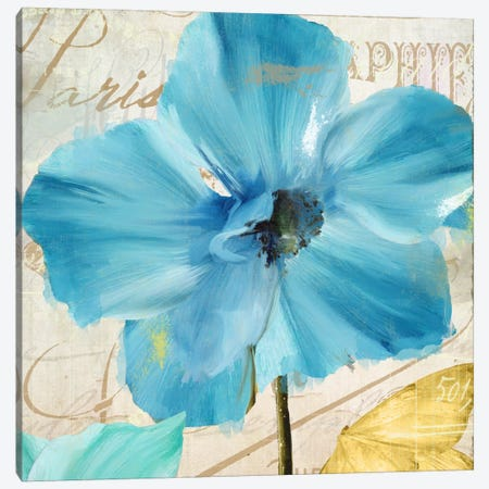 Blue Mountain Poppy Canvas Print #CBY167} by Color Bakery Canvas Wall Art