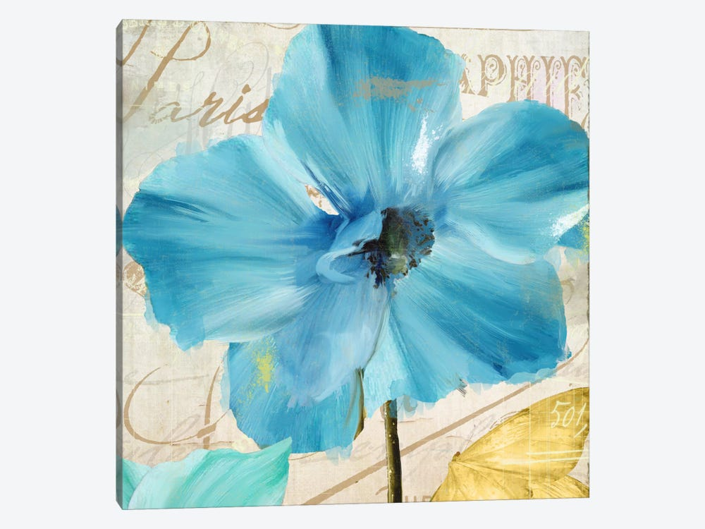 Blue Mountain Poppy by Color Bakery 1-piece Canvas Art