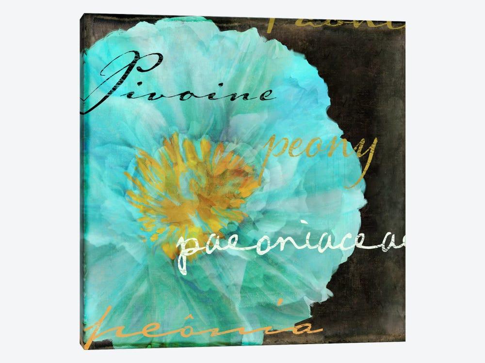 Blue Peony Dark by Color Bakery 1-piece Canvas Art Print