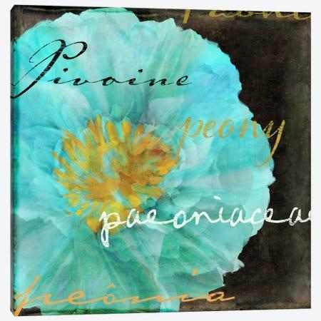 Blue Peony Dark Canvas Print #CBY168} by Color Bakery Canvas Print