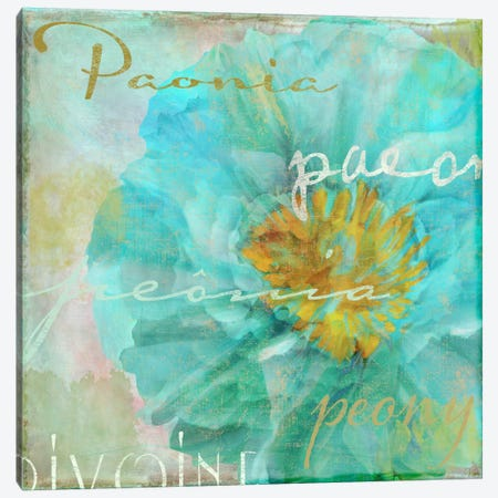 Blue Peony Light Canvas Print #CBY169} by Color Bakery Art Print
