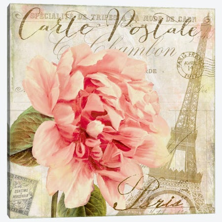 Bonjour I Canvas Print #CBY183} by Color Bakery Canvas Print