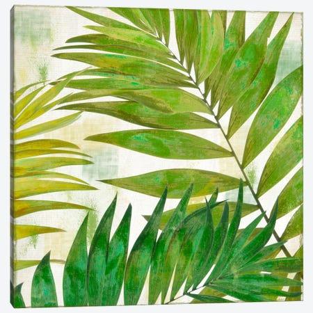 Brasilia II Canvas Print #CBY192} by Color Bakery Canvas Art