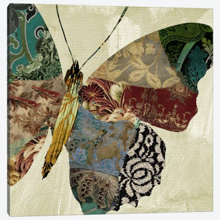 Butterfly Brocade II Canvas Print #CBY197} by Color Bakery Canvas Art Print