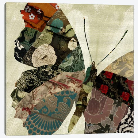 Butterfly Brocade III Canvas Print #CBY198} by Color Bakery Canvas Wall Art